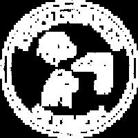logo-ring-white-tr